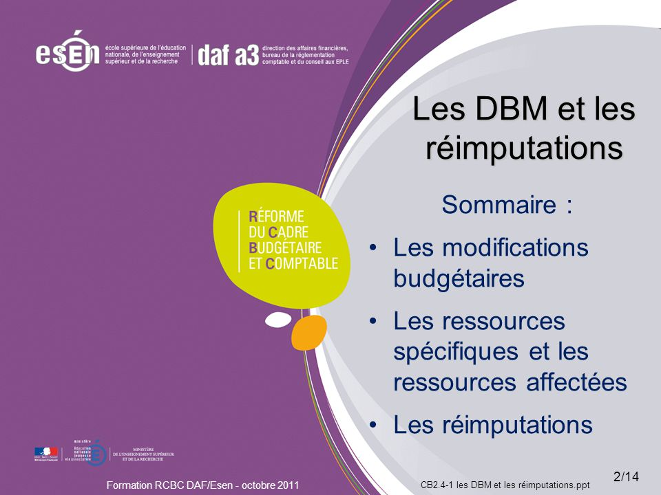 Les DBM et les réimputations