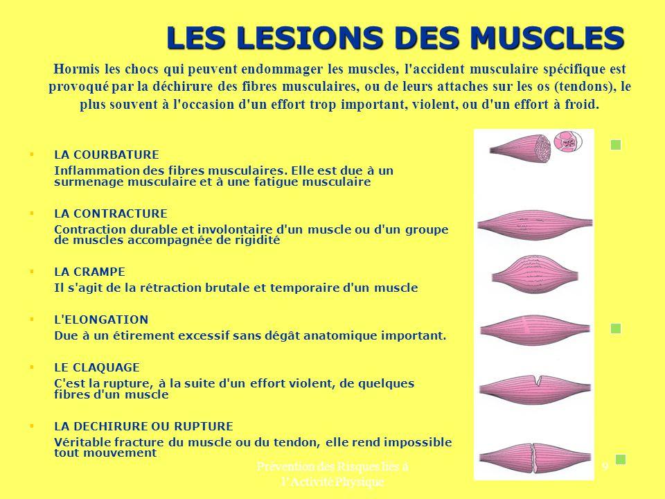 LES LESIONS DES MUSCLES