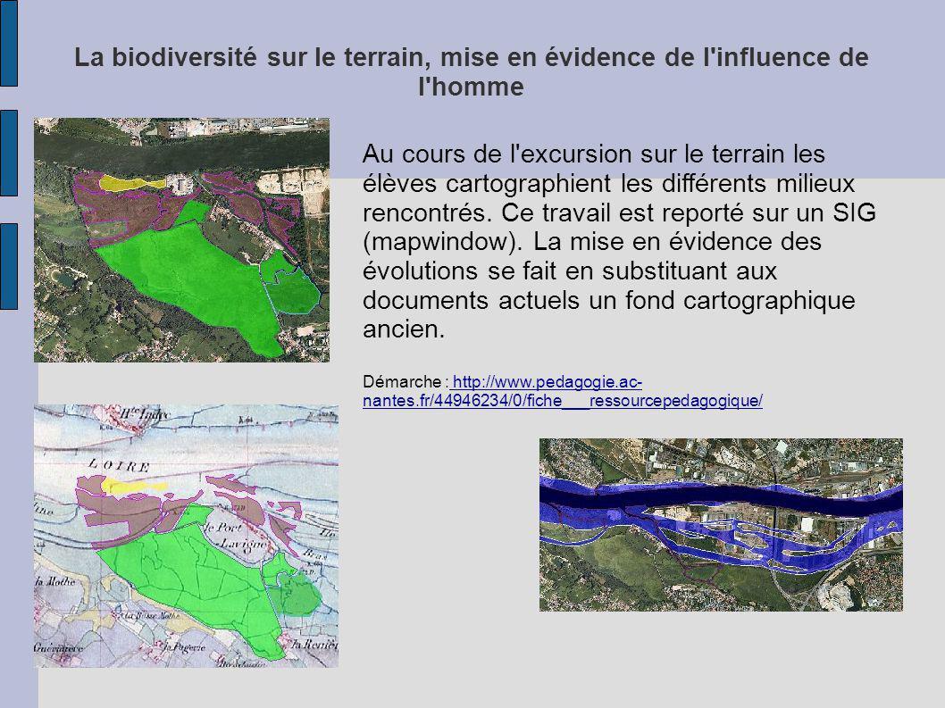 La biodiversité sur le terrain, mise en évidence de l influence de l homme