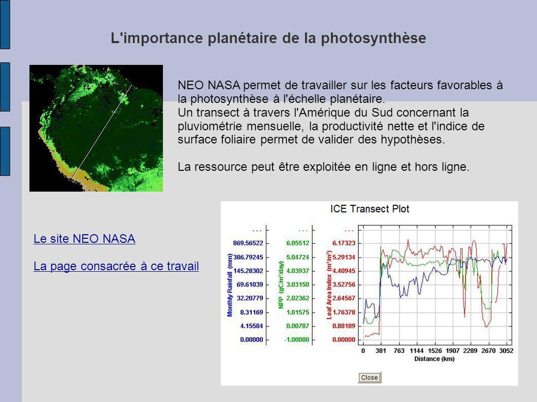 L importance planétaire de la photosynthèse