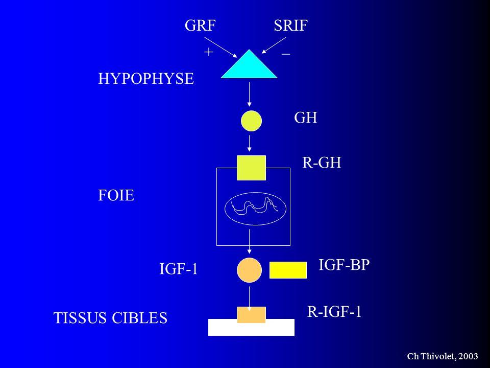 GRF SRIF _ + HYPOPHYSE GH R-GH FOIE IGF-BP IGF-1 R-IGF-1 TISSUS CIBLES