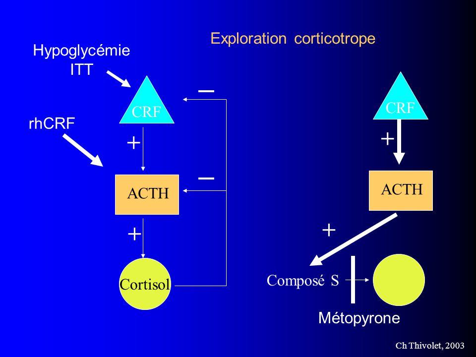 + + + Exploration corticotrope Hypoglycémie ITT CRF CRF rhCRF ACTH