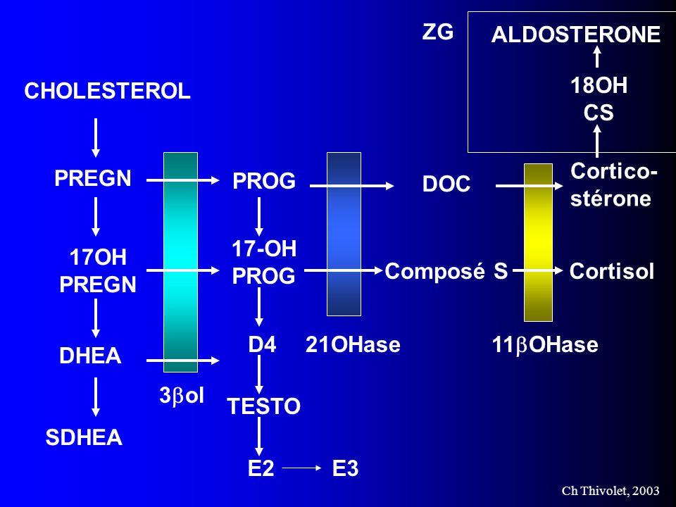 ZG Cortico- stérone. Cortisol. 18OH. CS. ALDOSTERONE. CHOLESTEROL. PREGN. 17OH. DHEA. SDHEA.