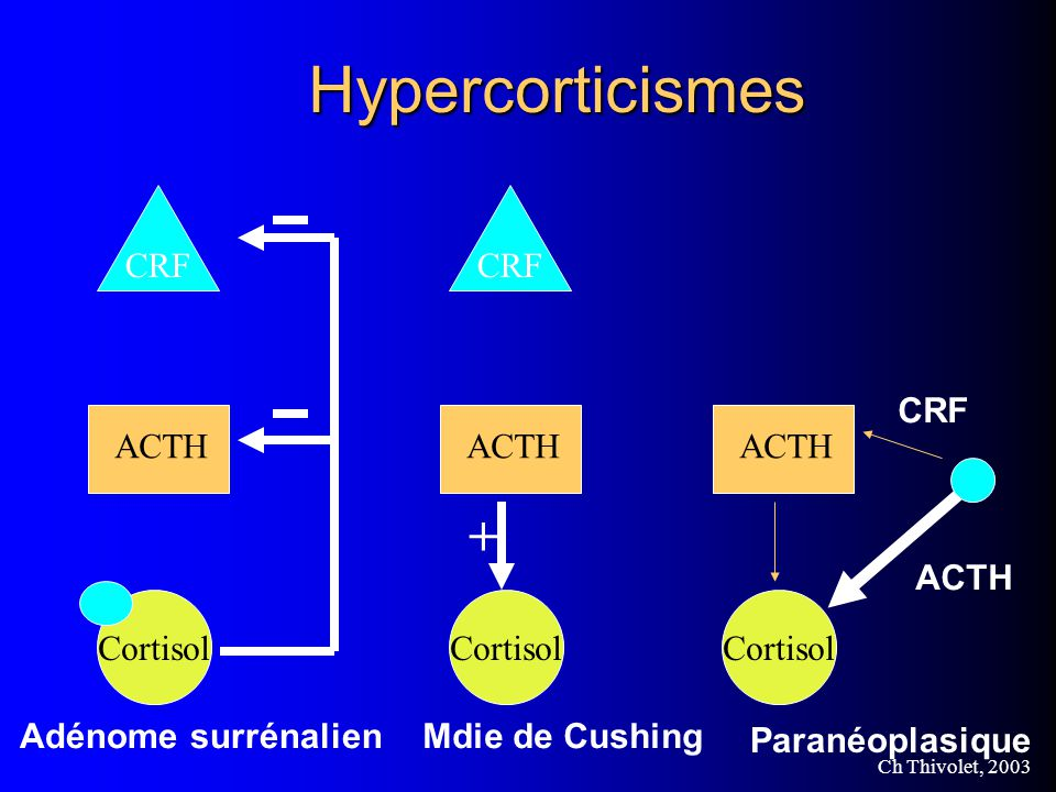 Hypercorticismes + CRF Cortisol ACTH CRF Cortisol ACTH CRF Cortisol