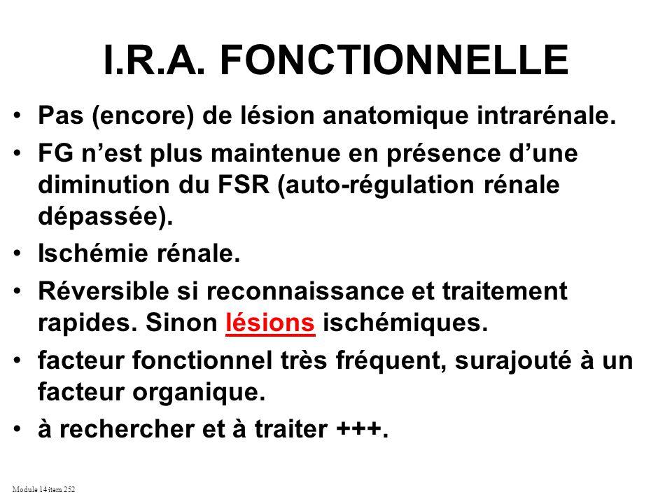 I.R.A. FONCTIONNELLE Pas (encore) de lésion anatomique intrarénale.