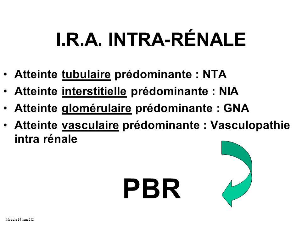 PBR I.R.A. INTRA-RÉNALE Atteinte tubulaire prédominante : NTA