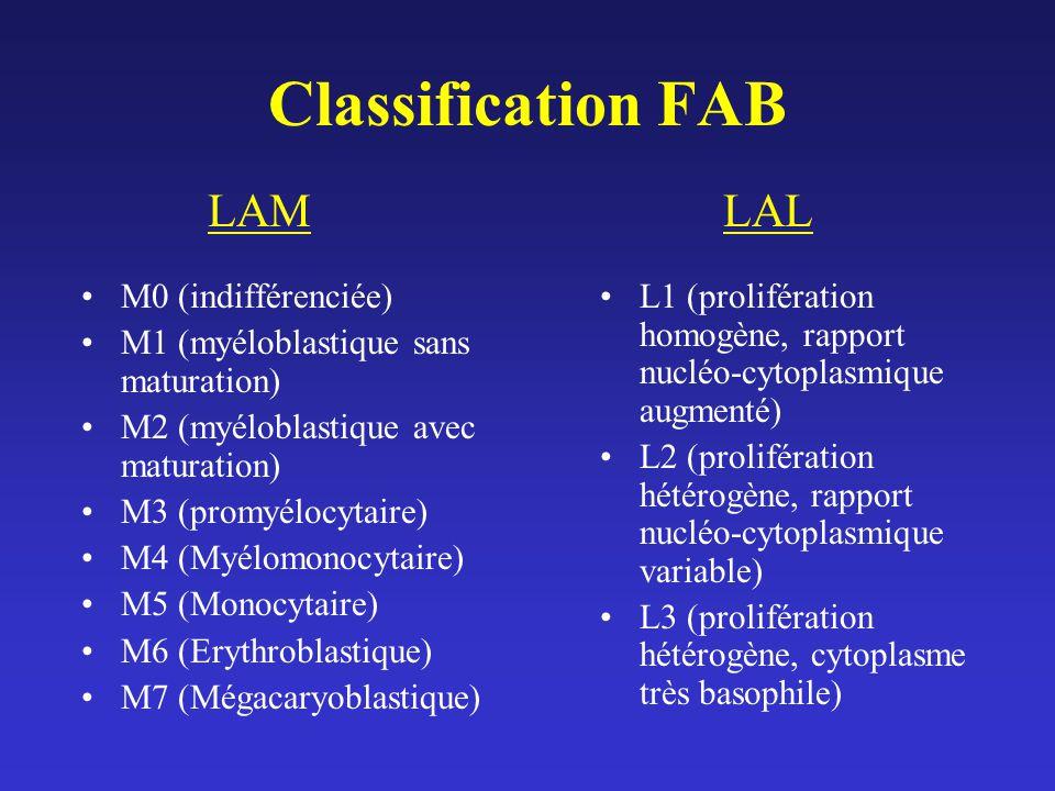Classification FAB LAM LAL M0 (indifférenciée)