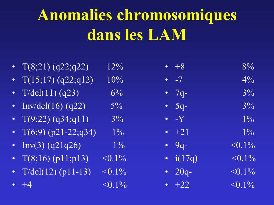 Anomalies chromosomiques dans les LAM