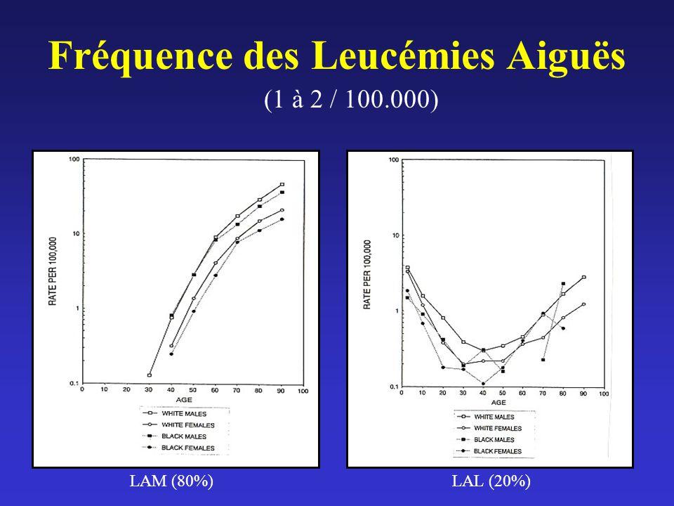 Fréquence des Leucémies Aiguës