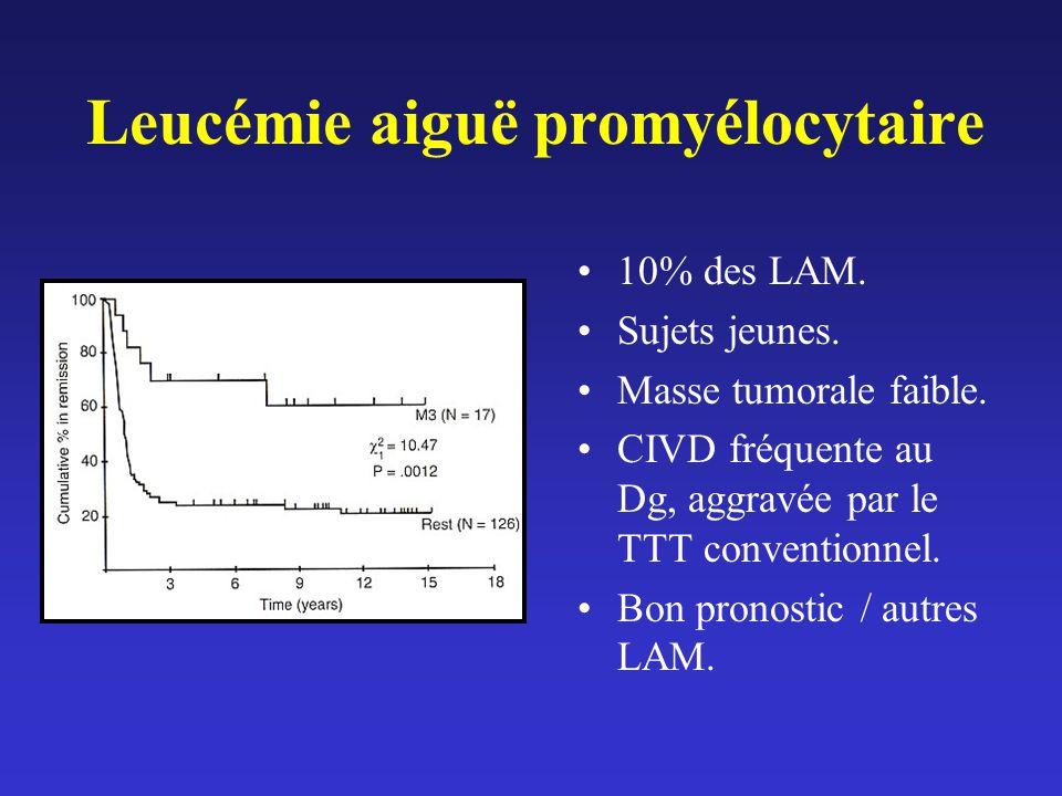 Leucémie aiguë promyélocytaire
