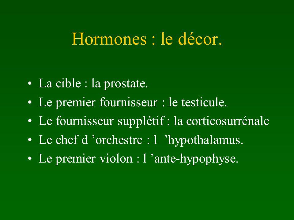 Hormones : le décor. La cible : la prostate.