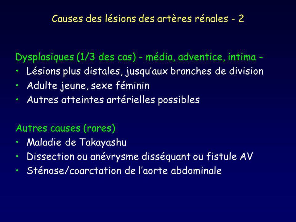 Causes des lésions des artères rénales - 2