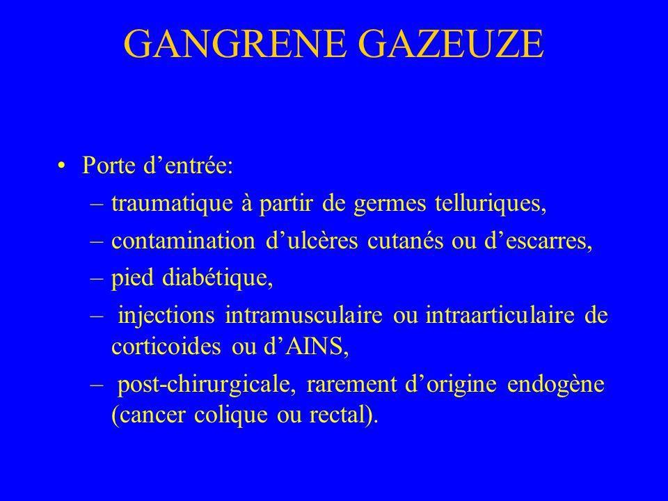 GANGRENE GAZEUZE Porte d'entrée: