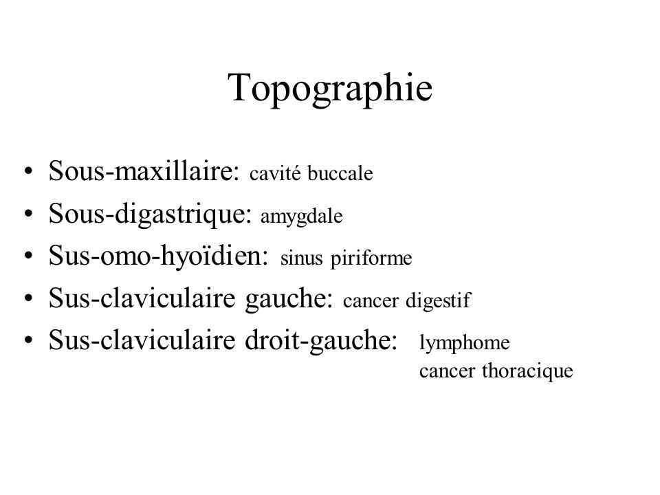 Topographie Sous-maxillaire: cavité buccale Sous-digastrique: amygdale