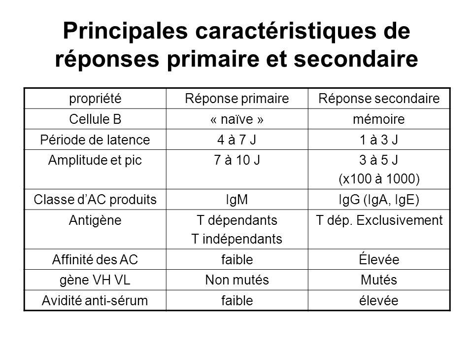 Principales caractéristiques de réponses primaire et secondaire