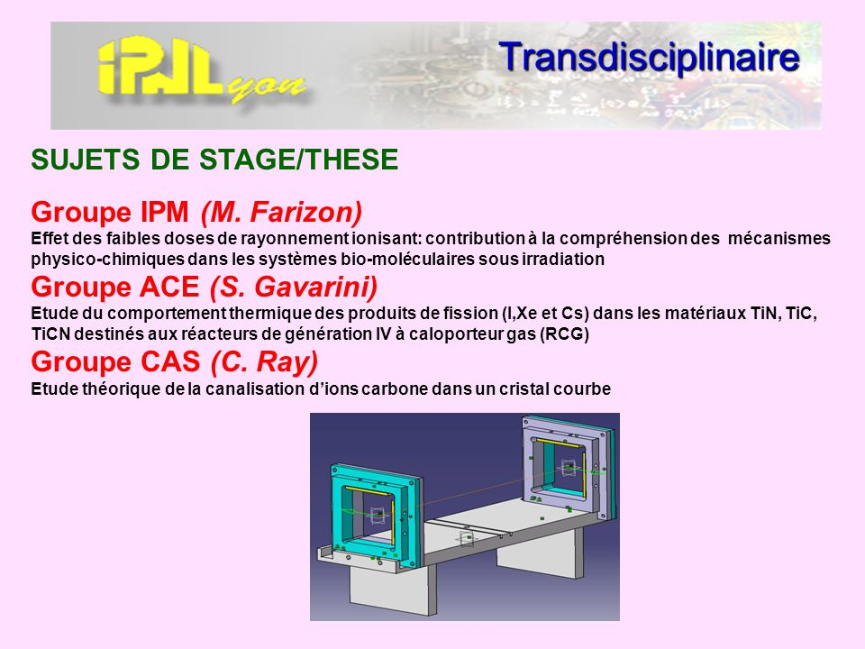 Transdisciplinaire SUJETS DE STAGE/THESE
