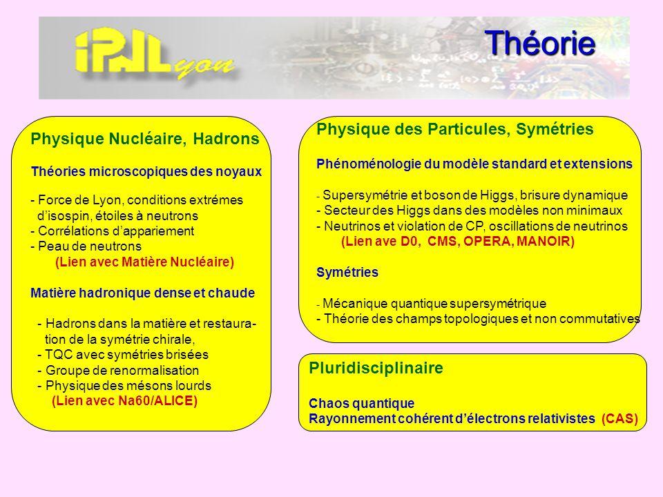 Théorie Physique des Particules, Symétries Physique Nucléaire, Hadrons