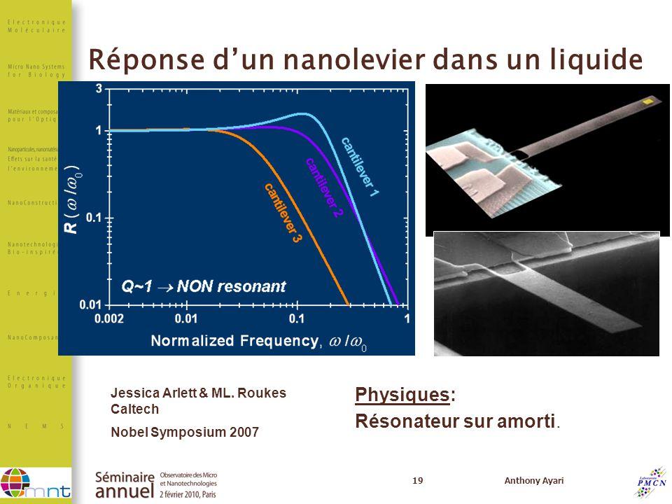 Réponse d'un nanolevier dans un liquide