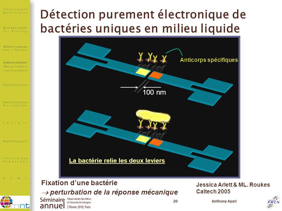 Détection purement électronique de bactéries uniques en milieu liquide