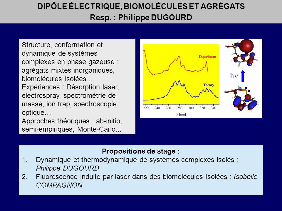 DIPÔLE ÉLECTRIQUE, BIOMOLÉCULES ET AGRÉGATS Resp. : Philippe DUGOURD