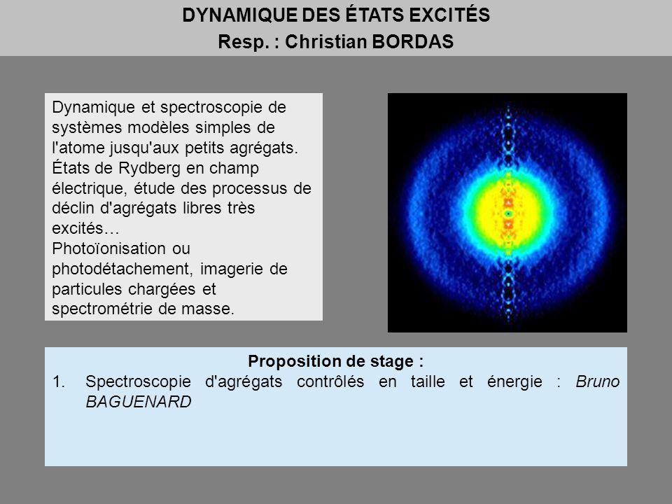 DYNAMIQUE DES ÉTATS EXCITÉS Resp. : Christian BORDAS
