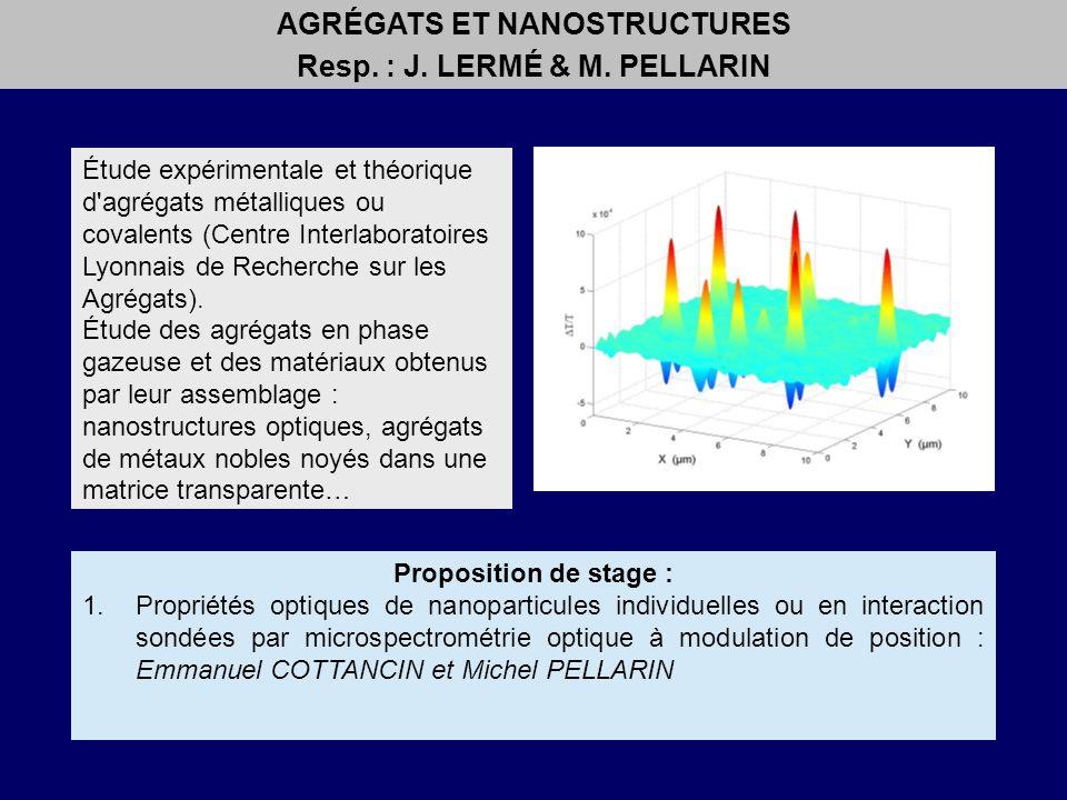 AGRÉGATS ET NANOSTRUCTURES Resp. : J. LERMÉ & M. PELLARIN