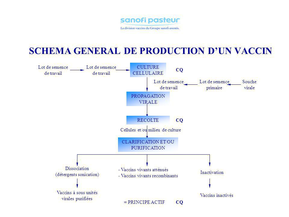SCHEMA GENERAL DE PRODUCTION D'UN VACCIN