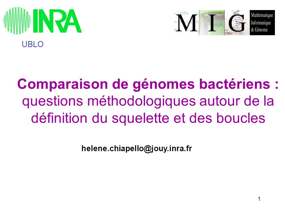 UBLO Comparaison de génomes bactériens : questions méthodologiques autour de la définition du squelette et des boucles.