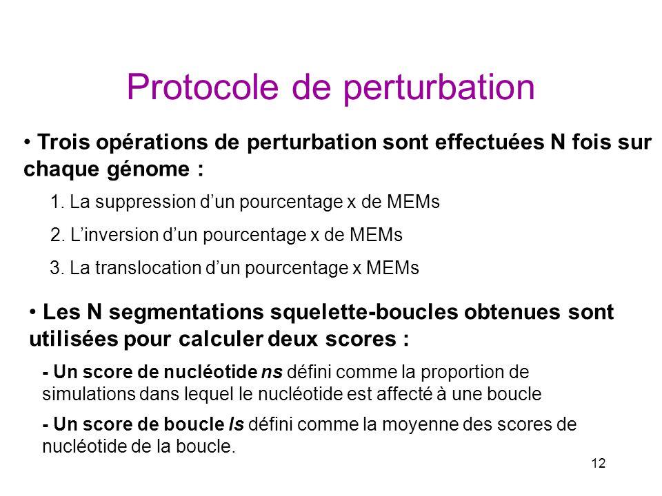 Protocole de perturbation