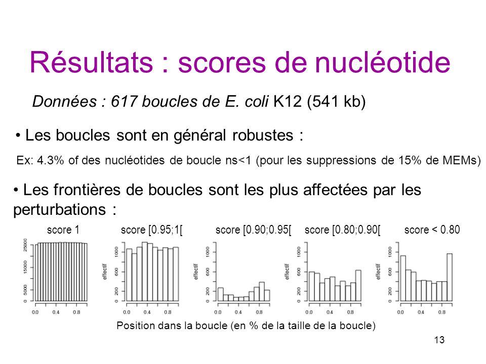 Résultats : scores de nucléotide