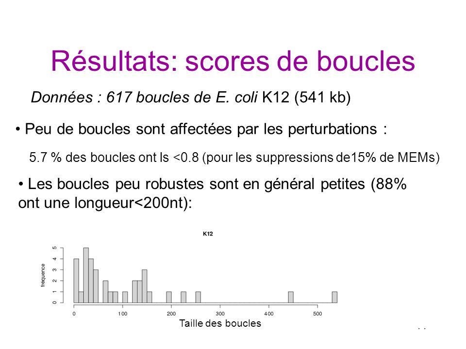 Résultats: scores de boucles