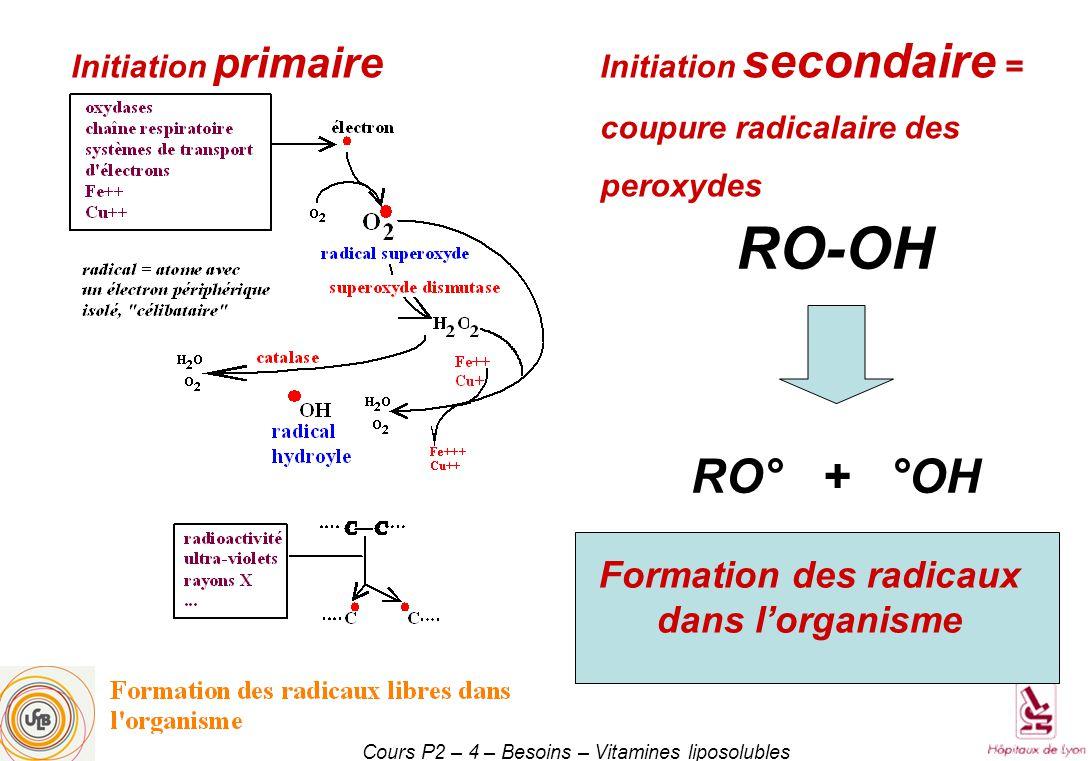 Formation des radicaux dans l'organisme