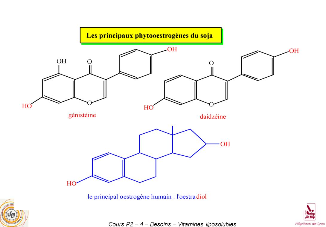 Cours P2 – 4 – Besoins – Vitamines liposolubles