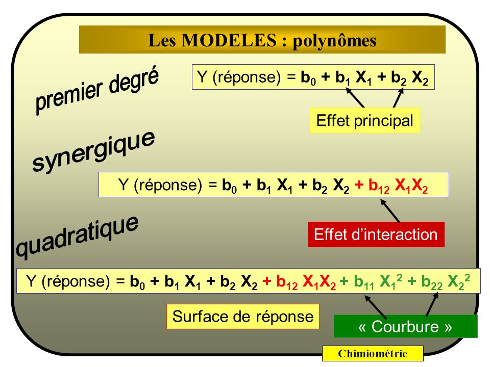 Les MODELES : polynômes