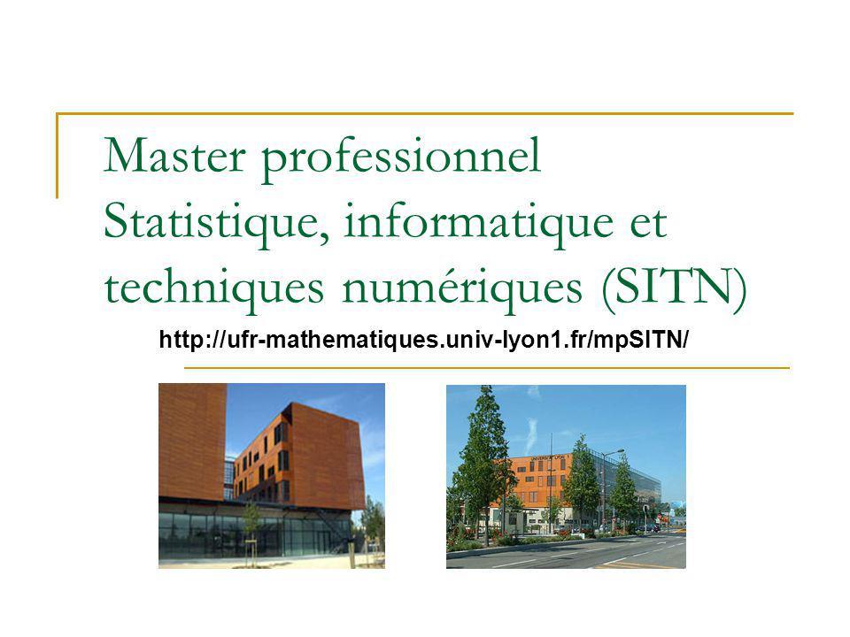 Master professionnel Statistique, informatique et techniques numériques (SITN)