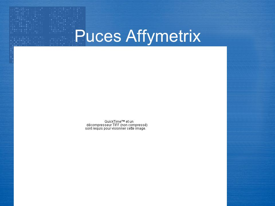 Puces Affymetrix Transcriptome