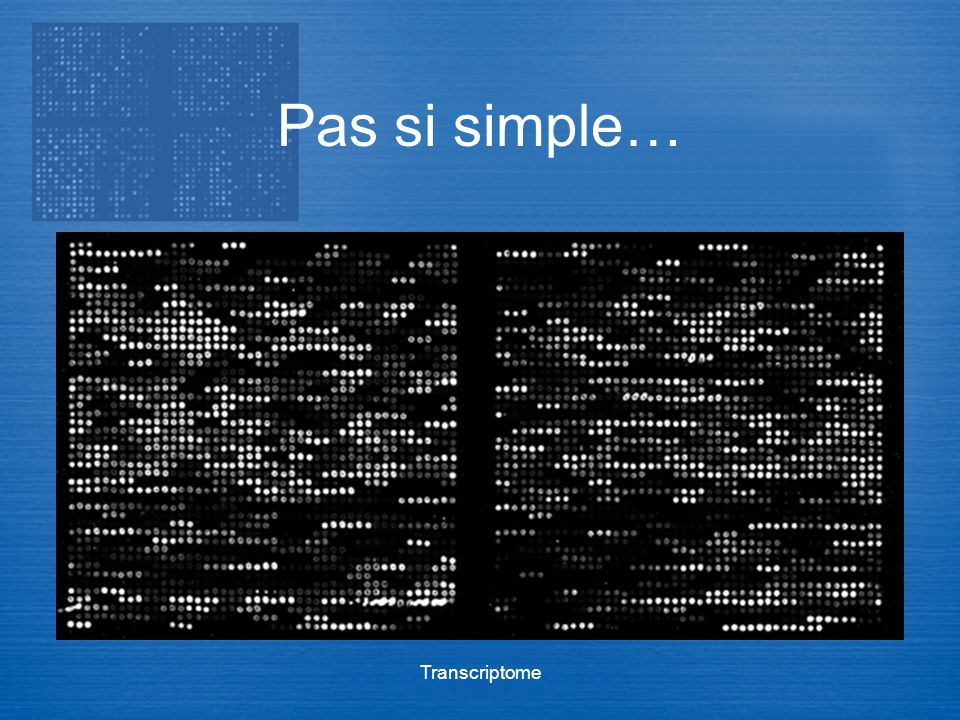 Pas si simple… Transcriptome