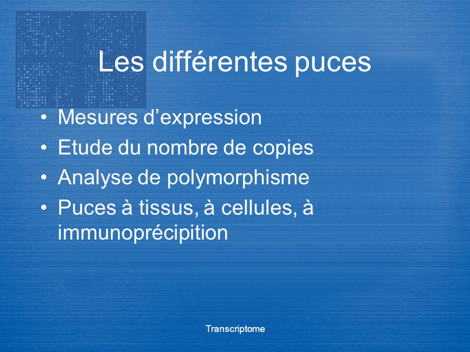 Les différentes puces Mesures d'expression Etude du nombre de copies