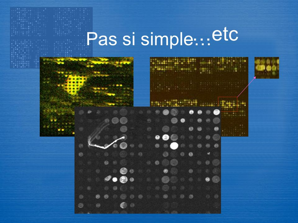 Pas si simple… …etc Transcriptome