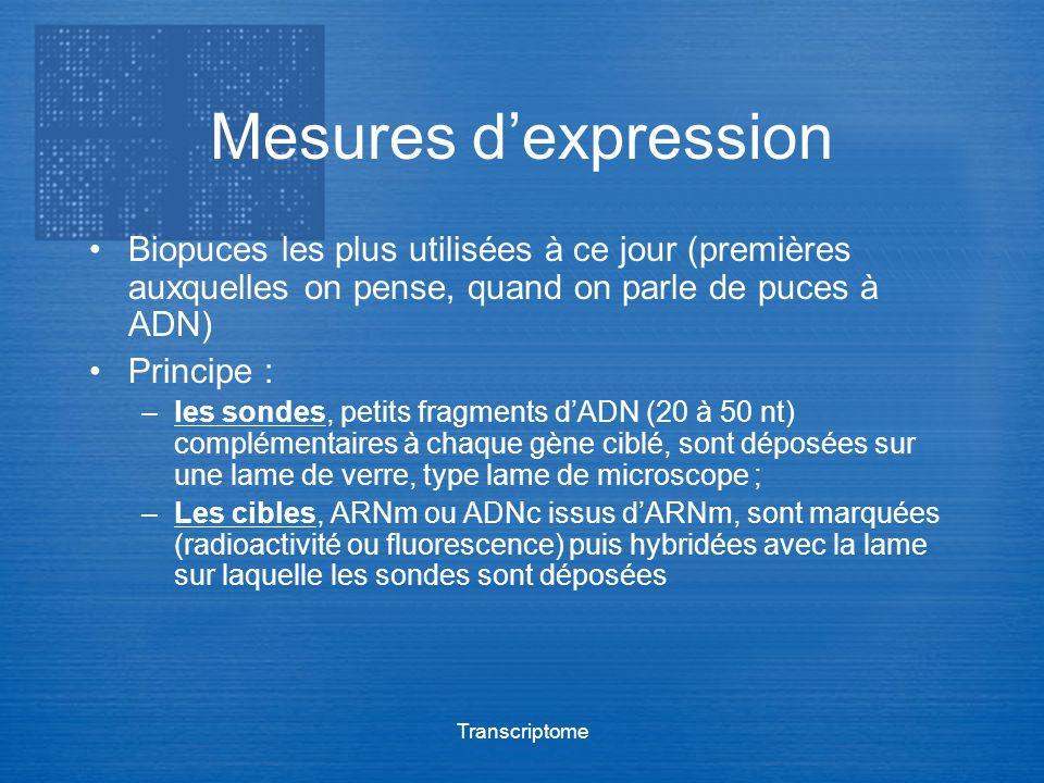 Mesures d'expression Biopuces les plus utilisées à ce jour (premières auxquelles on pense, quand on parle de puces à ADN)