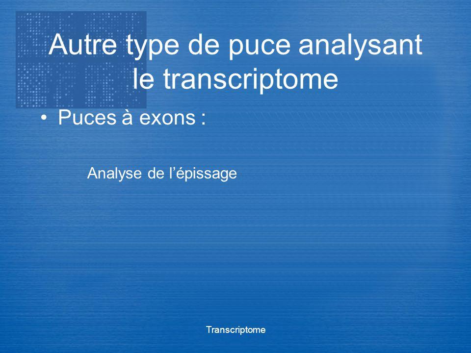Autre type de puce analysant le transcriptome