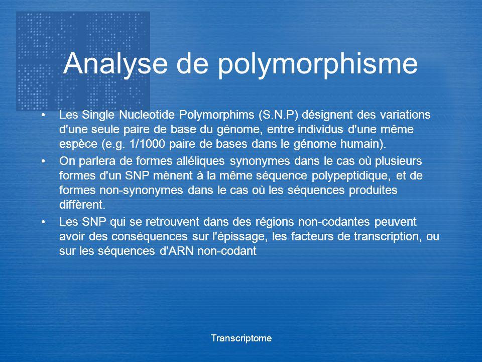 Analyse de polymorphisme