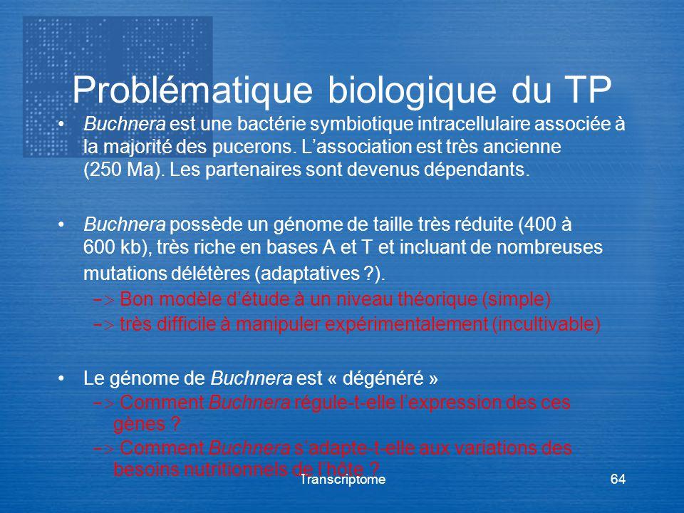 Problématique biologique du TP