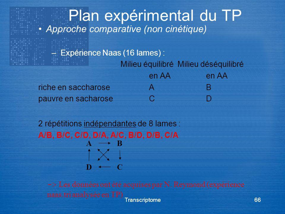 Plan expérimental du TP