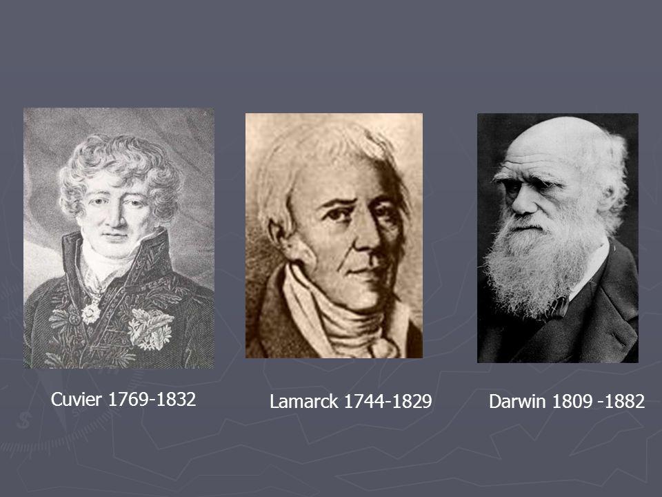 Cuvier 1769-1832 Lamarck 1744-1829 Darwin 1809 -1882
