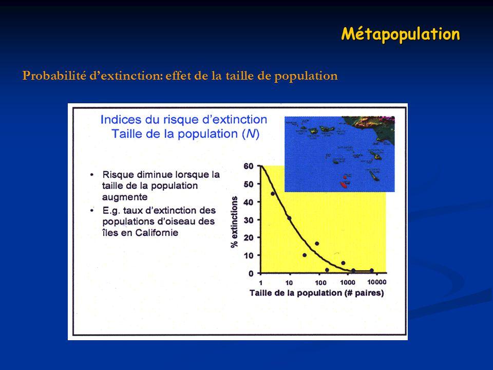 Probabilité d'extinction: effet de la taille de population