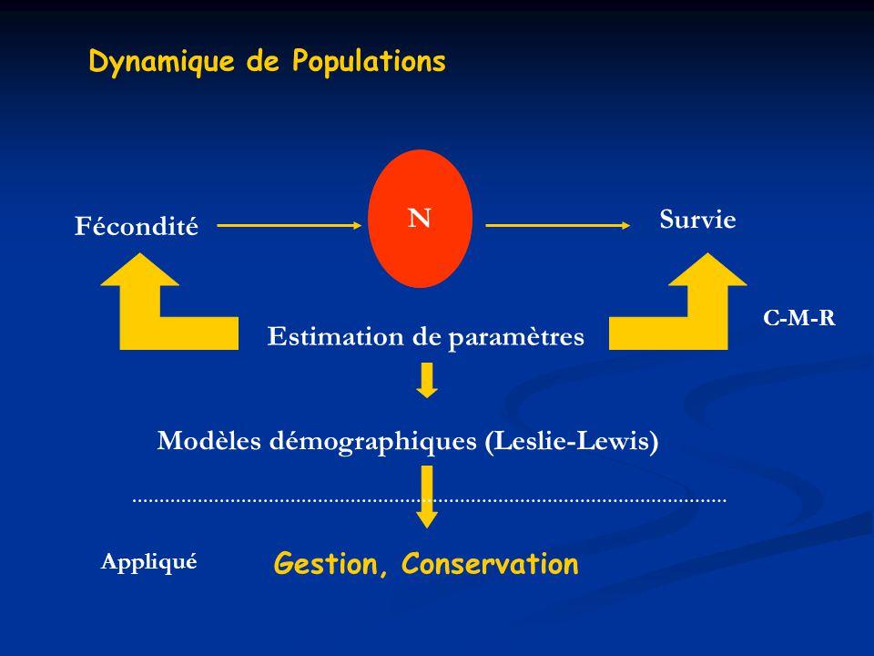 Dynamique de Populations