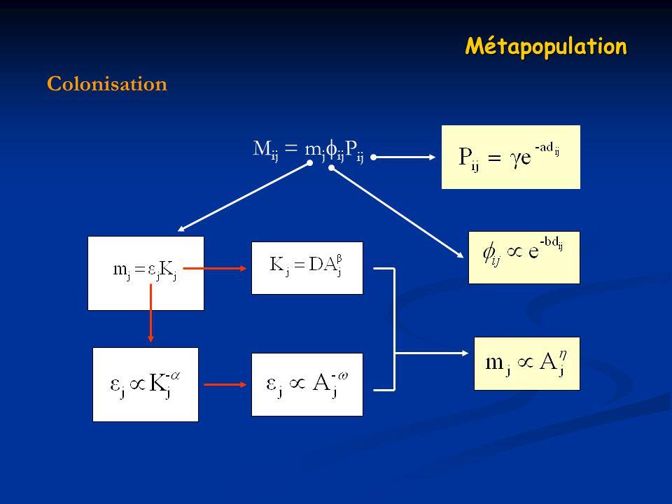 Métapopulation Colonisation Mij = mjijPij