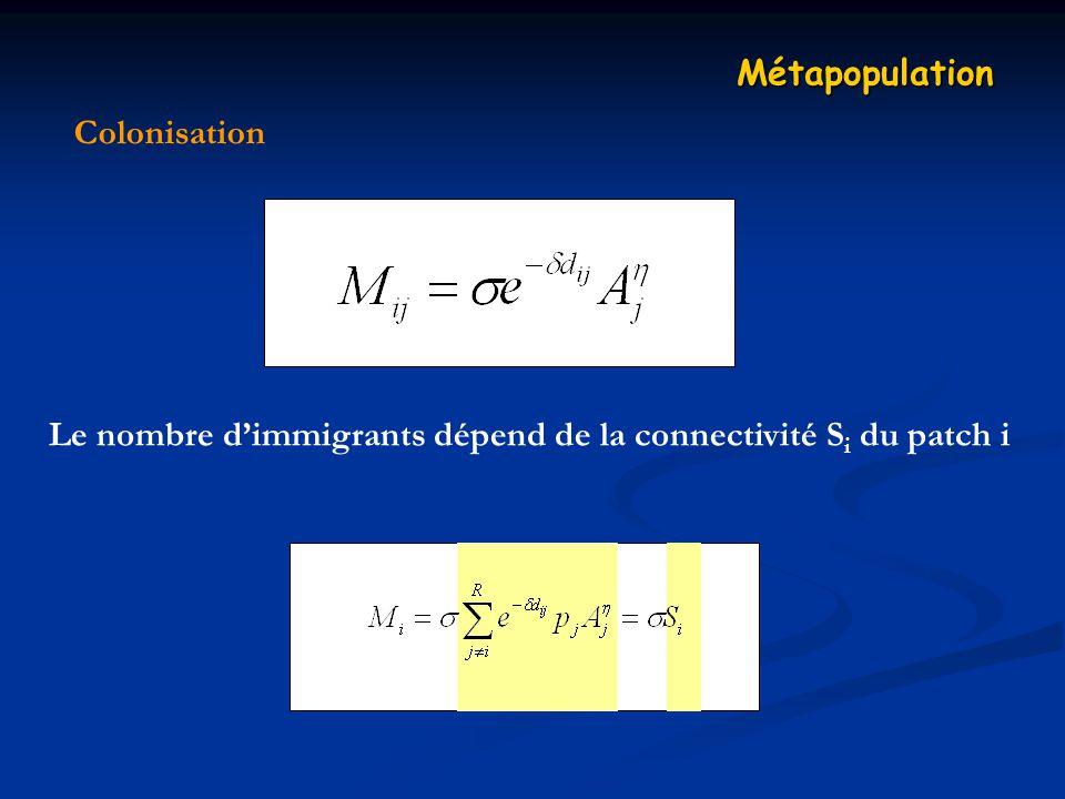Métapopulation Colonisation Le nombre d'immigrants dépend de la connectivité Si du patch i
