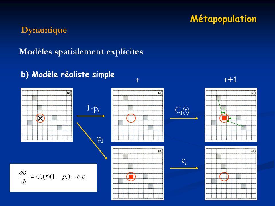 Modèles spatialement explicites